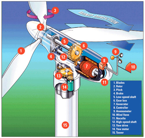 Schematic of wind turbine